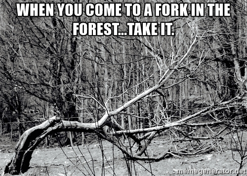 fork-in-the-forest